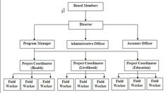 Typical Non Profit Organizational Chart Structure Infographic