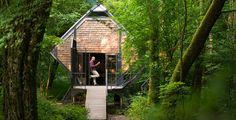 Wald Haus Le vent de Foret