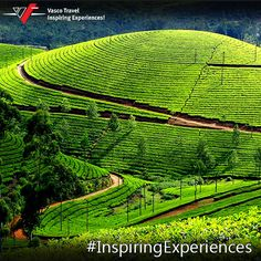 With expansive tea plantations, rolling #hills, waterfalls and streams Munnar attracts #adventure #travellers in huge numbers. A sought-after destination for adventure sports, it is a heaven for nature-lovers & adrenaline junkies.  #InspiringExperiences