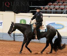 Charlie Cole quarter horses