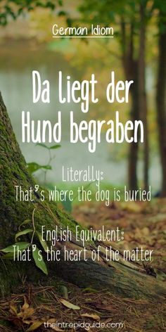 German Idioms Da liegt der Hund begraben This idiom makes me sad, The Dog is the heart of the matter. Study German, German English, Learn German, Learn French, German Grammar, German Words, German Language Learning, Language Study, English Lessons