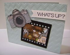 SU FROM THE HERD, along with a couple SU dies.    Stampin' Studio: Sometimes Ya Just Gotta Laugh!