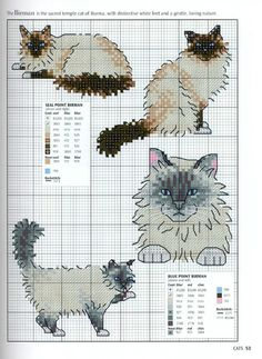 Gallery.ru / Фото #51 - Picture Your Pet in Cross Stitch - patrizia61