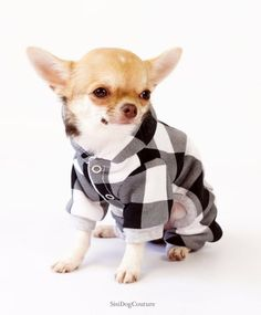 Chihuahua clothes XS dog hoodies Small dog sweater Dog coat Dog outfits Chihuahua Dog clothes Yorkie Dog jacket Small dog clothes