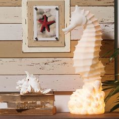 <p> Great accent to any beach decor. Add this detailed seahorse with light to a table top for that coastal living look!<br /> <br />  Dimension 8,5 x 22.5 x8 inches</p>