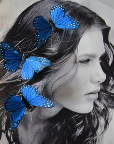 3 Dark Blue Feathers  Butterflies Hair Clips for by olgadesigns, $9.00