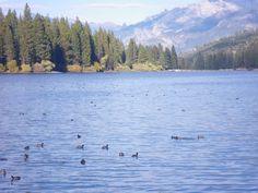 Hume Lake CA