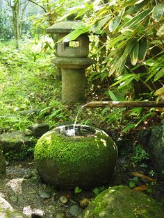 Asian Japanese garden green moss water fountain