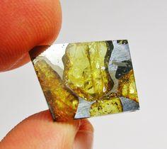 Fukang Meteorite pallasite