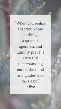 """""""When you realise that you know nothing, a space of openness and humility prevails. Then real understanding enters the mind and guides it to the Heart."""" ~ Mooji Mooji Quotes, Openness, When You Realize, Humility, Spiritual Awakening, Spirituality, Mindfulness, Space, Heart"""