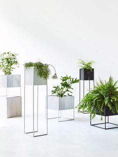 8 Great Plant Pots — The Design Files | Australia's most popular design blog.