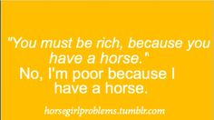 I worked for my horse. I am not rich because I care for my horse with everything I have. Whenever they are hurt we pay for their healing. It is not so simple as owning a horse as you have board, riding, gas for the car, training, lessons, and shows. You must be rich because you don't have a horse.