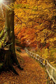 #Autumn #beautyful #space #loveautumn