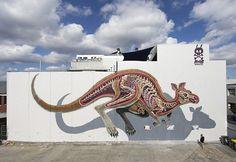 Grafitti anatomia - Street Art Nychos