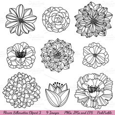 Illustrations ~ Flower Silhouettes Vectors & Clipart ~ Creative Market