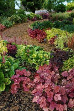 A Beautiful Garden Pathway, Full of Heuchera. Garden Borders, Garden Paths, Landscape Design, Garden Design, Landscape Bricks, Shade Garden Plants, Shaded Garden, Heuchera, Woodland Garden