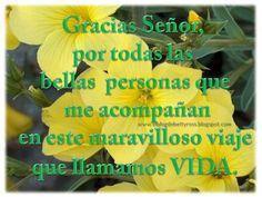 #FelizDomingo