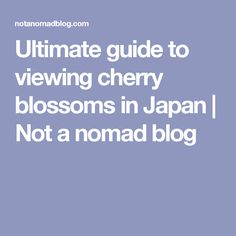 ultimate guide to viewing cherry blossoms in japan not a nomad blog