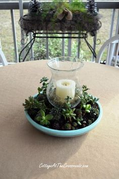 Succulent Centerpiece - Live Creatively Inspired