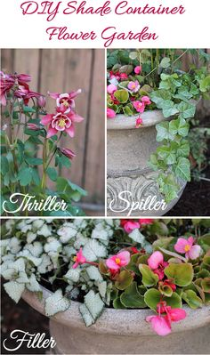 diy shade container garden - if these are all for shade, then they should work for under the tree in the front yard.