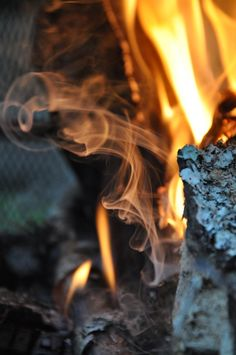 How to make fire starters.  Plus useful tip -->  Put Sage in your campfire to keep mosquitoes away!