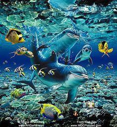 Save the Whales Underwater Art, Underwater Creatures, Ocean Creatures, Dolphin Images, Dolphin Art, Ocean Art, Ocean Life, Save The Whales, Bottlenose Dolphin