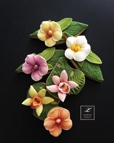 Orchid cookies. Costa Rican cookies. By Lorena Rodriguez.