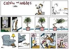 Image result for calvin and hobbes color comic strips