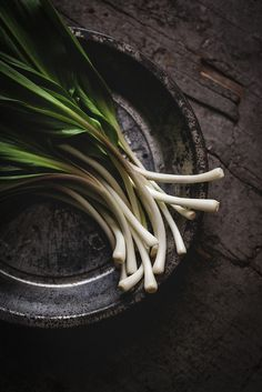 ramps by carey nershi, via Flickr