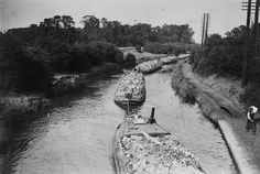 'London's Venice: barges on the Grand Junction Canal', 15 September by Jarche, James. SSPL Science and Society Picture Library Canal Barge, Canal Boat, London Pictures, Narrowboat, London Life, Venice, Gravel Pit, River, Stock Photos