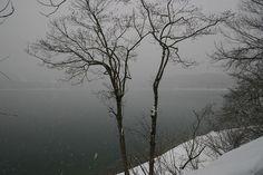 雪降る湖    青木湖