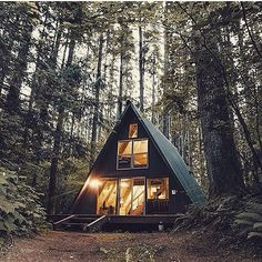 Yes please. Some of my favorite things: #forest #nature #tinyhouse #tree by alokappadurai