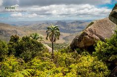 Andringitra Nationalpark Madagaskar. Basel, Mountains, Nature, Madagascar, Vacation Places, Ocean, National Forest, Places To Travel, Naturaleza