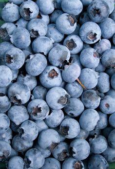 Uprawa borówki amerykańskiej Food Hacks, Blueberry, Berries, Flowers, Outdoors, Balcony, Lawn And Garden, Berry, Bury