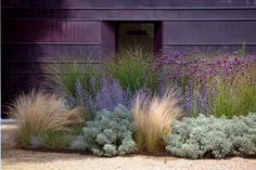 NEUTRAL HEAVEN - Interior Design and Mood Creation: Planting in Waves of Colour