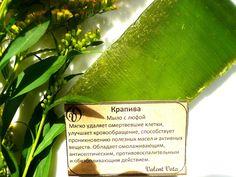 """Alenka's beauty: Мыло ручной работы с люфой """"Крапива"""". Valent Vota...."""