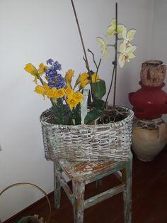 Ikebana, Wicker Baskets, My Arts, Plants, Home Decor, Decoration Home, Room Decor, Plant, Home Interior Design