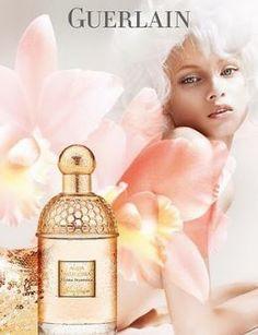 Top 10 Sensual Perfumes for Women - Best Seductive Fragrances