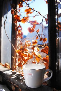 Nothing like a crisp, cool autumn morning with a steaming cup of fresh coffee. A great way to start the day...especially when you can linger and savor the moment. It's possible if you take the time.