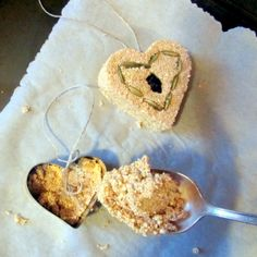 Birdseed Ornaments - just gelatin, water and birdseed!