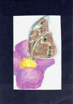 oil pastels Oil Pastels, Butterfly, Painting, Collection, Art, Art Background, Painting Art, Kunst, Butterflies