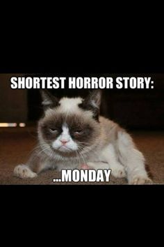 """For Alyssa, because it is funny and it reminds me that we both always say that """"We hate mondays!!!"""""""