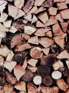 Wood is warm. Wood is life.