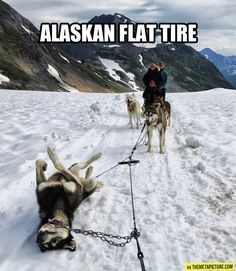Emergency in Alaska…