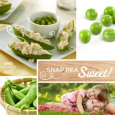Yummy chicken salad served in snap pea canoes! Such a fun and fresh presentation for a classic salad favorite. Just slice open the sugar snap peas, remove the peas and fill. #cutefood
