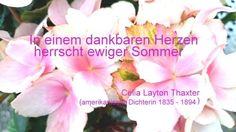 Text: Celia Layton Thaxter amerikanische Schriftstellerin, Dichterin 1835-1894) Foto: Angelika Albrecht- Stümpfig. Achtsam zu sein, hierzu zählt auch die Dankbarkeit. Es gibt immer jeden Tag immer  etwas und noch viel mehr, wofür wir dankbar sein können.