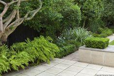 Contrasting textured planting by garden designer Declan Buckley
