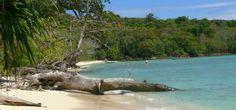 Beach View Saracen Bay