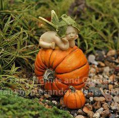 This fairy baby has fallen charmingly asleep atop an orange pumpkin. Baby Fairy, Love Fairy, Love Garden, Garden Ideas, Woodland Fairy, Forest Fairy, Garden Terrarium, Garden Plants, Clay Fairies