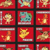 Pokemon Red Block